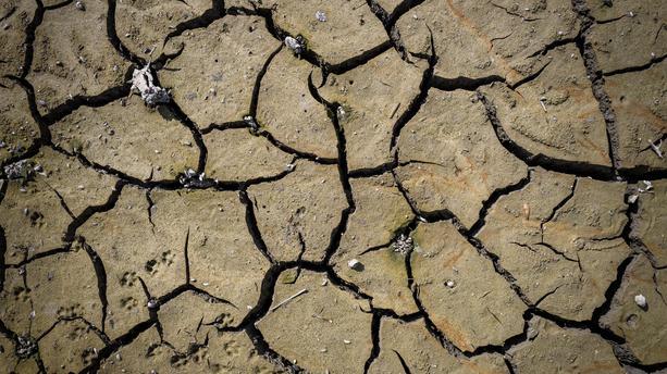 Déclaration sécheresse 2019