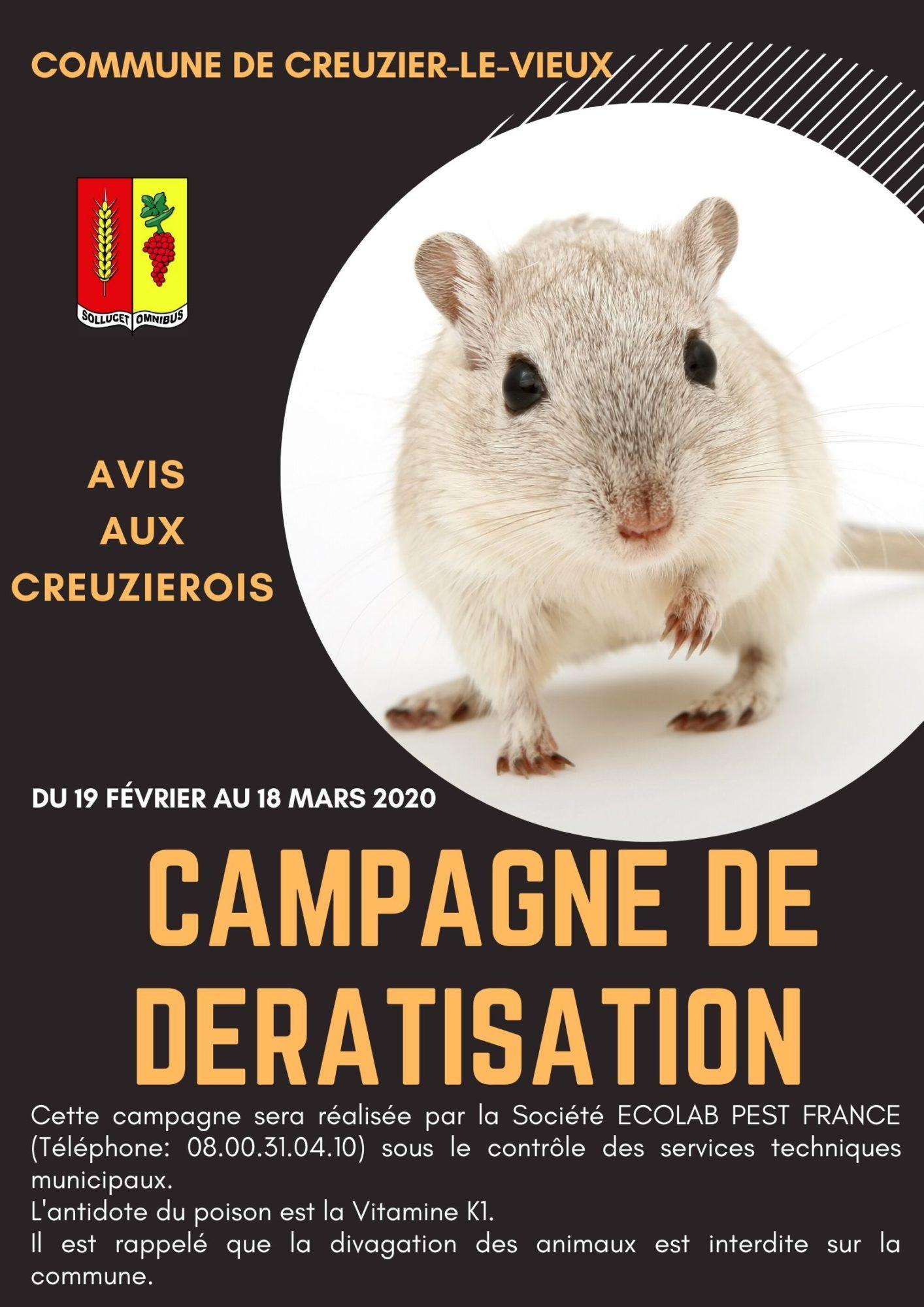 Affiche campagne de deratisation